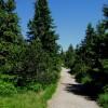 Letní sezóna pod ochranou krkonošských hor