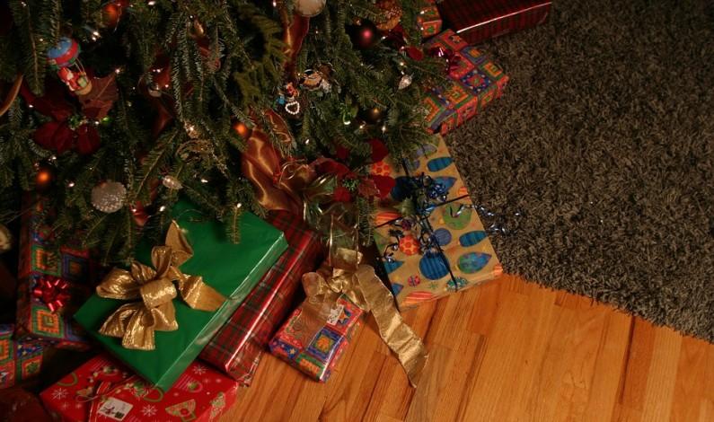 Panikaříte při výběru vánočních dárků? Pak jsou pro vás Expres balíčky od Stips.cz jako stvořené