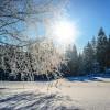 Šumavský Špičák zima neopouští. Sjezdovky jsou v dobré kondici, lyžuje se už za snížené ceny vedlejší sezony