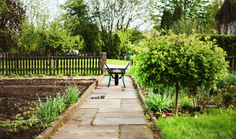 Jaro v zahradě potěší, ale i přidělá starosti