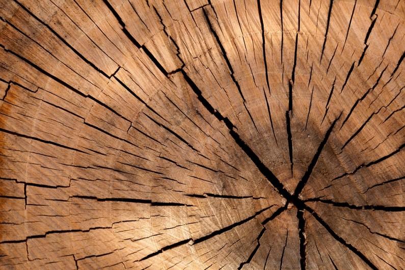 Imunitrelax je novinkou v prodloužení životnosti střech