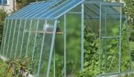 Je lepší fóliovník nebo skleník?